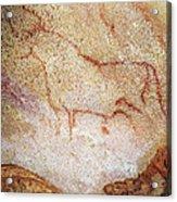 France: Cave Art Acrylic Print