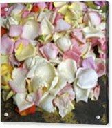 France Flower Petals, Still-life Acrylic Print
