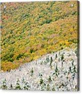 Franconia Notch State Park - White Mountains Nh Usa Autumn Acrylic Print