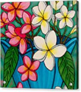 Frangipani Sawadee Acrylic Print