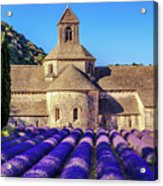 All Purple, Cistercian Abbey Of Notre Dame Of Senanque, France  Acrylic Print