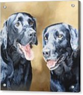 Frankie And Ross Acrylic Print