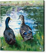 Fred And Ethel At Scott's Pond Acrylic Print