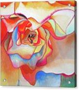 Fred Martin Begonia Acrylic Print