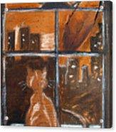 Fredrick's Window Acrylic Print