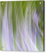 Free Flow Acrylic Print