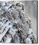 Freezing Falls Acrylic Print