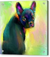 French Bulldog Painting 4 Acrylic Print