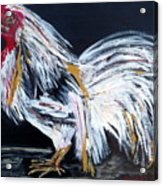 French Country Chicken Acrylic Print
