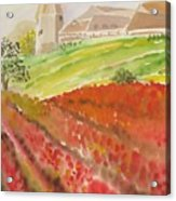 French Fields Acrylic Print