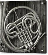 French Horn 2 Acrylic Print