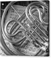 French Horn In Black And White Acrylic Print