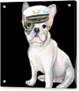 Frenchie French Bulldog Yellow Glasses Captains Hat Dogs In Clothes Acrylic Print