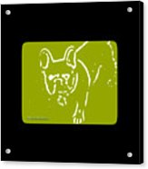 Frenchielove Design Chartreuse Acrylic Print