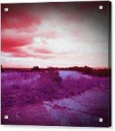 Fresca Sky  Acrylic Print