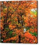 Fresco Autumn Diptych Left Acrylic Print