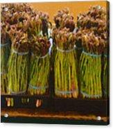 fresh Asparagus Acrylic Print