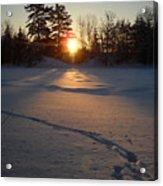 Fresh Deer Tracks At Sunrise Acrylic Print