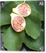 Fresh Figs Acrylic Print