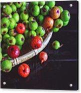 Fresh Figs Acrylic Print