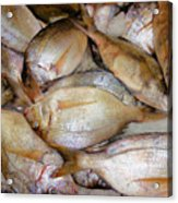 Fresh Fishes In A Market 4 Acrylic Print
