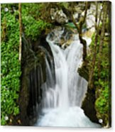 Fresh Green Forest In Spring At Lepenica River Gorge At Sunikov  Acrylic Print
