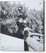 Fresh Snowfall Acrylic Print