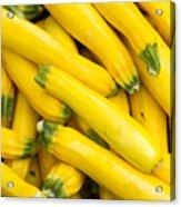 Fresh Yellow Squash  Acrylic Print