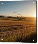 Freshly Harvested Fields Of Barley In Countryside Landscape Bath Acrylic Print