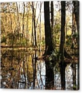 Friday Hill Reflections 1 Acrylic Print