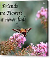 Friends Are Flowers That Never Fade Acrylic Print