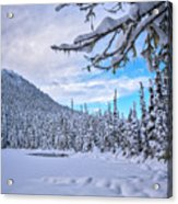 Frigid Beauty Acrylic Print