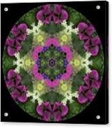 Fringe With Pink Acrylic Print