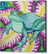 Frog And Flower Acrylic Print