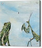 Frog Fly And Mantis Acrylic Print by Fabrizio Cassetta