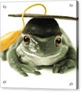 Frog Graduate Acrylic Print