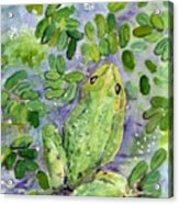 Frog In The Pond Acrylic Print