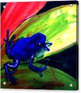 Frog On Leaf Acrylic Print