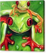 Frog Rodeo Acrylic Print