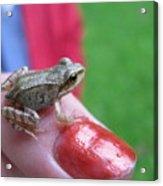 Frog The Prince Acrylic Print