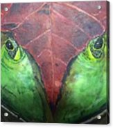 Frog With Leaf Acrylic Print
