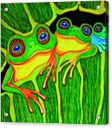 Froggie Trio Acrylic Print