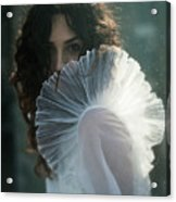 From Dust Acrylic Print