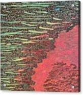 From Florida Acrylic Print