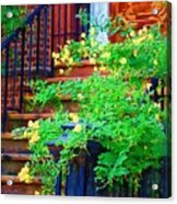 Front Stoop Acrylic Print