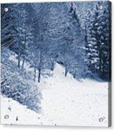Frost Path Acrylic Print
