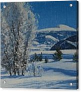 Frost Tapestry Acrylic Print