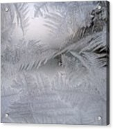 Frosted Pane Acrylic Print