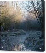 Frosted Riverbank Acrylic Print
