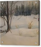 Frosting The Snowman Acrylic Print